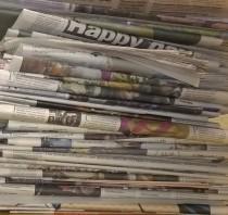 Rassegna stampa di mar 29/07 (seconda parte)