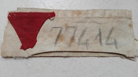 Il triangolo rosso degli osspositori politici e il numero di matricola di Mirella Stanzione
