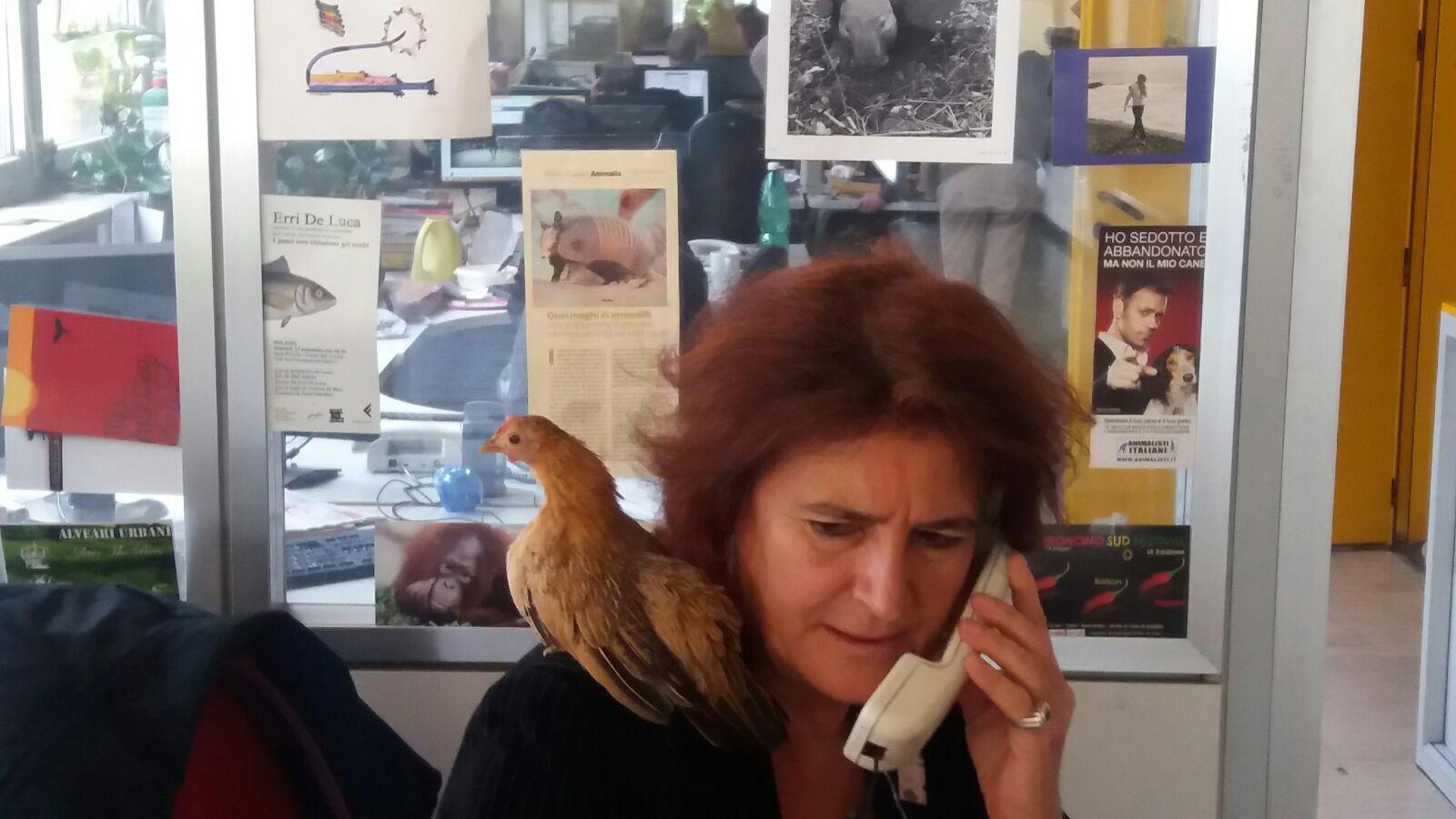Cecilia Di Lieto al numero giallo