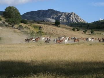 Abruzzo con Radio Popolare 2Equiraduno Valle Subequana