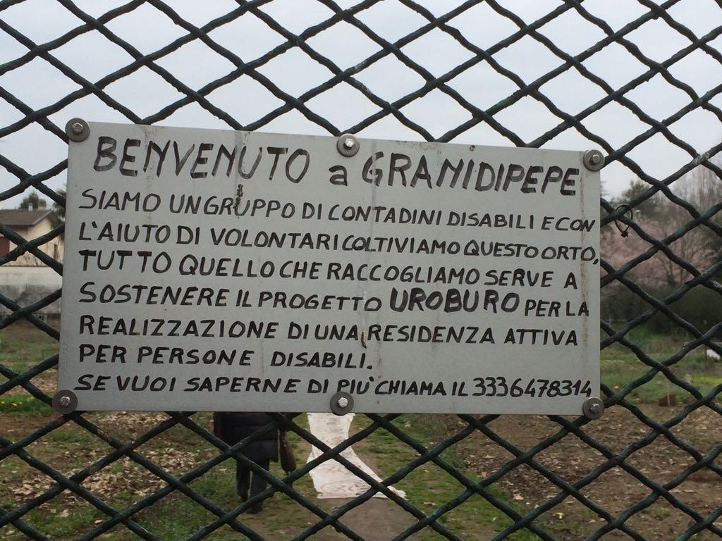 Granidipepe 01