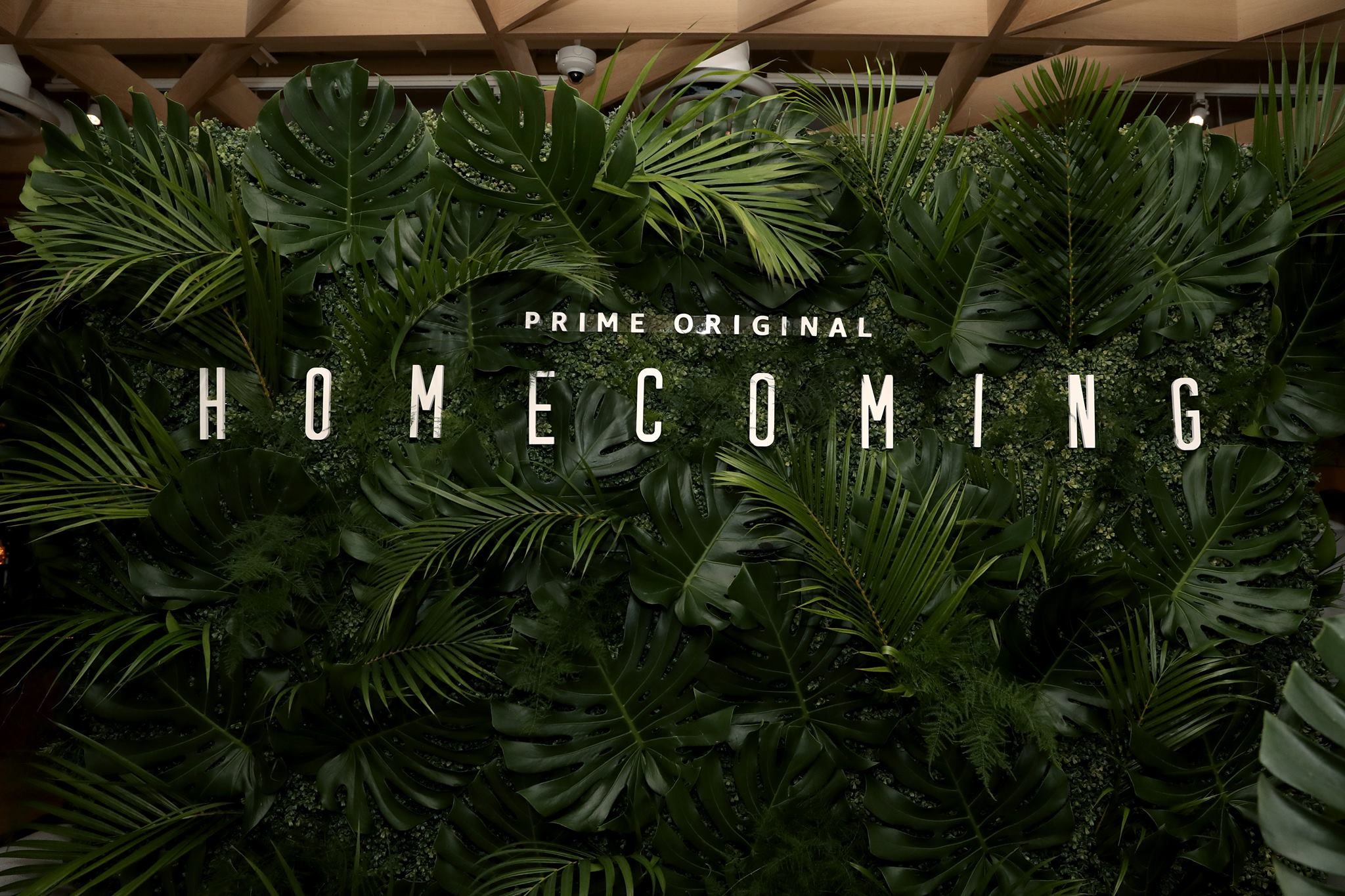 Homecoming - Amazon Prime Video