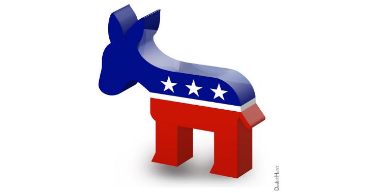 primarie democratiche 2020