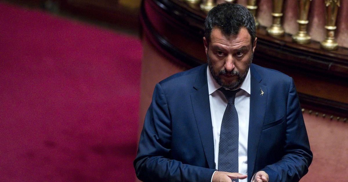 Salvini Senato
