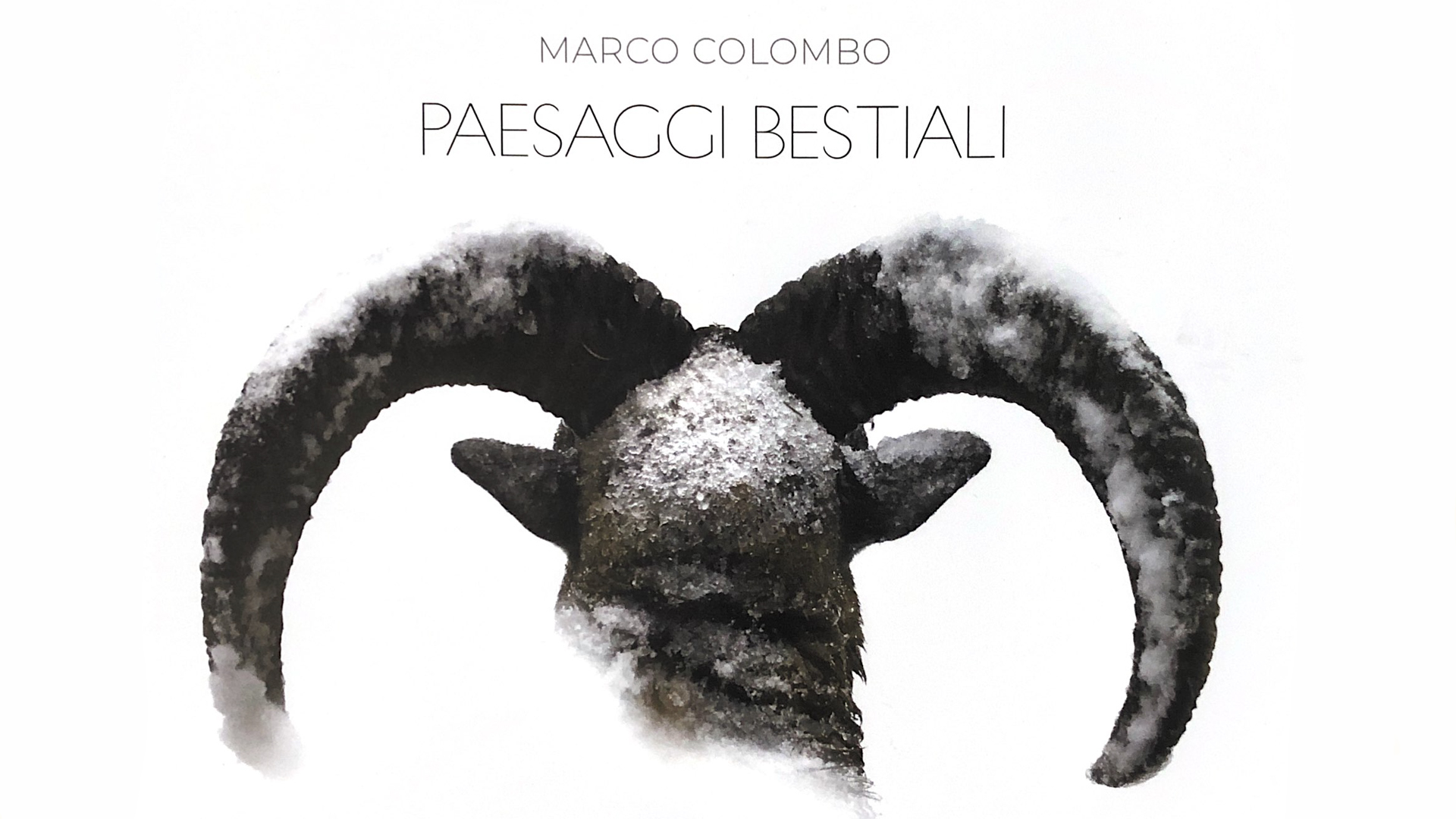 Marco Colombo - Paesaggi Bestiali