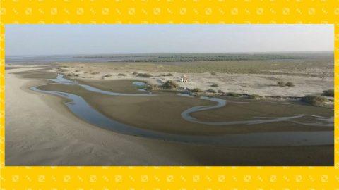 Nuova Dubai sul delta dell'Indo: a rischio un ecosistema unico